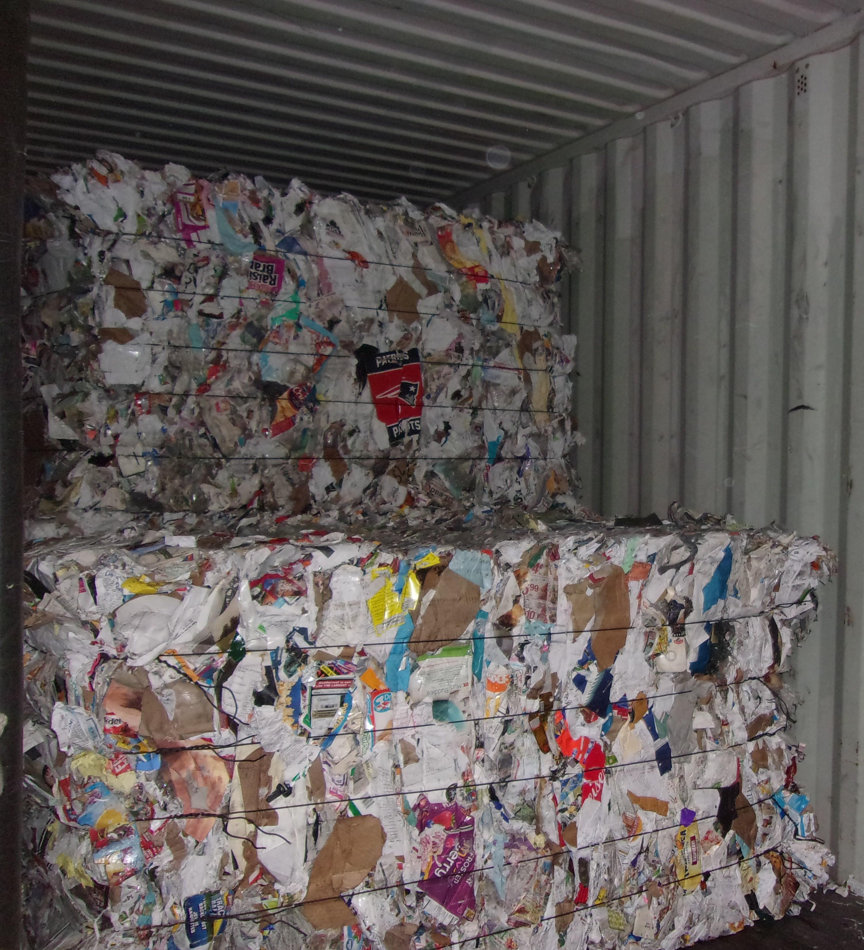 Rega Exports - Paper